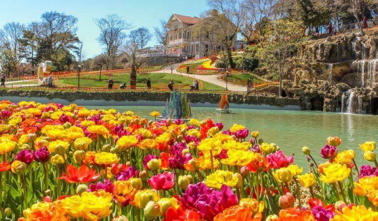 เทศกาลดอกทิวลิป อิสตันบูล (Istanbul Tulip Festival)